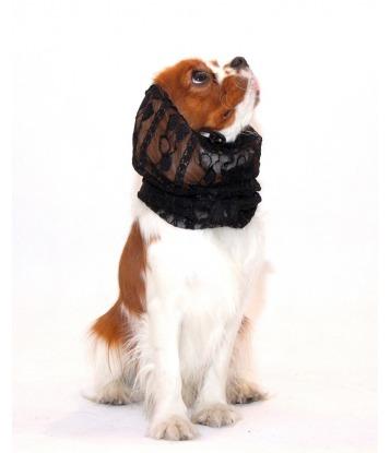 Komin na uszy dla psa