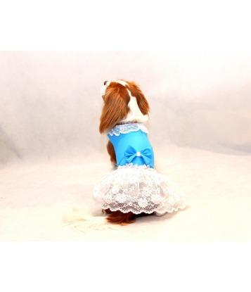 Błękitna sukienka z falbanką
