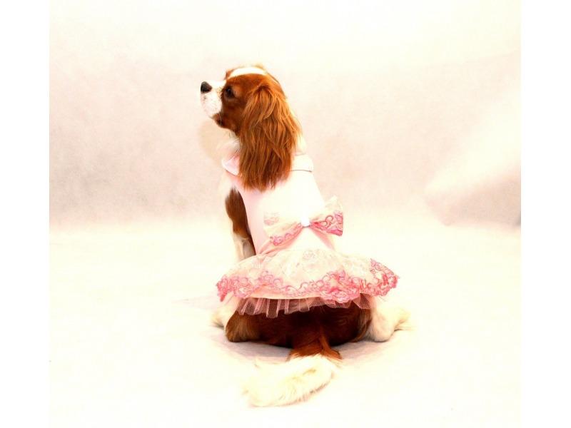 Sukienka z różową falbanką