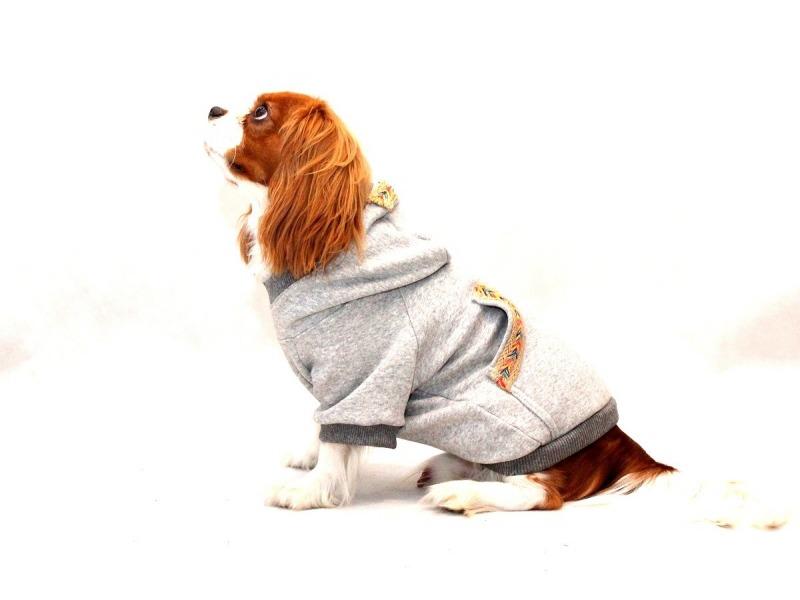 Bluza w stylu boho dla psa