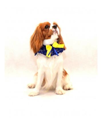 Kołnierzyk dla psa z żółtą...