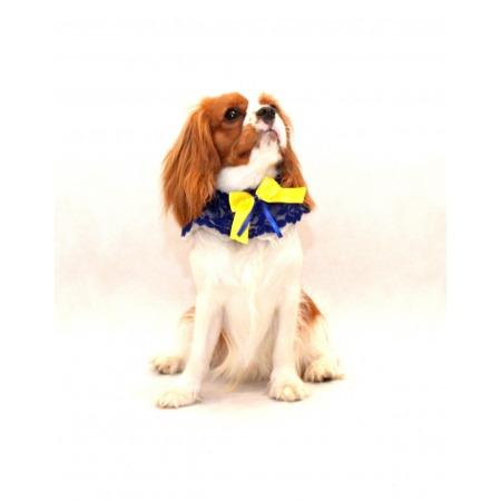 Kołnierzyk dla psa z żółtą kokardką