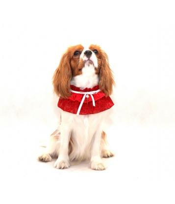 Kołnierzyk dla psa czerwony...