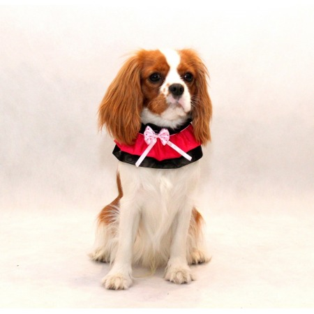 Kołnierzyk dla psa różowy z kokardką