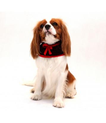 Kołnierzyk dla psa czarny z czerwoną kokardką