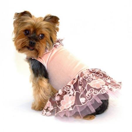 Sukienka dla psa z falbankami