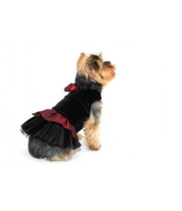 Sukienka dla psa...